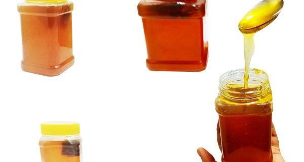 فروش عسل ترنجبین