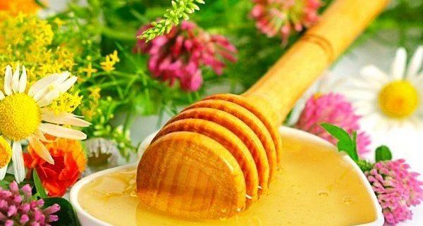 خریدار عمده عسل طبیعی