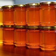 انواع عسل ترنجبین ایرانی